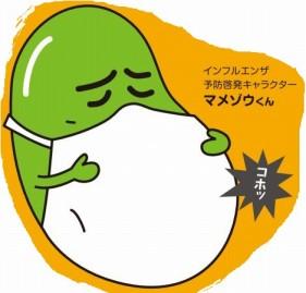 インフルエンザ|インフルエンザが正月のわが家を襲いました
