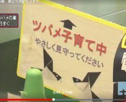 鎌倉駅の改札